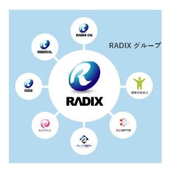 ラディックスグループの組織図